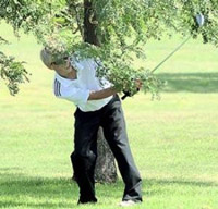 hitting under tree